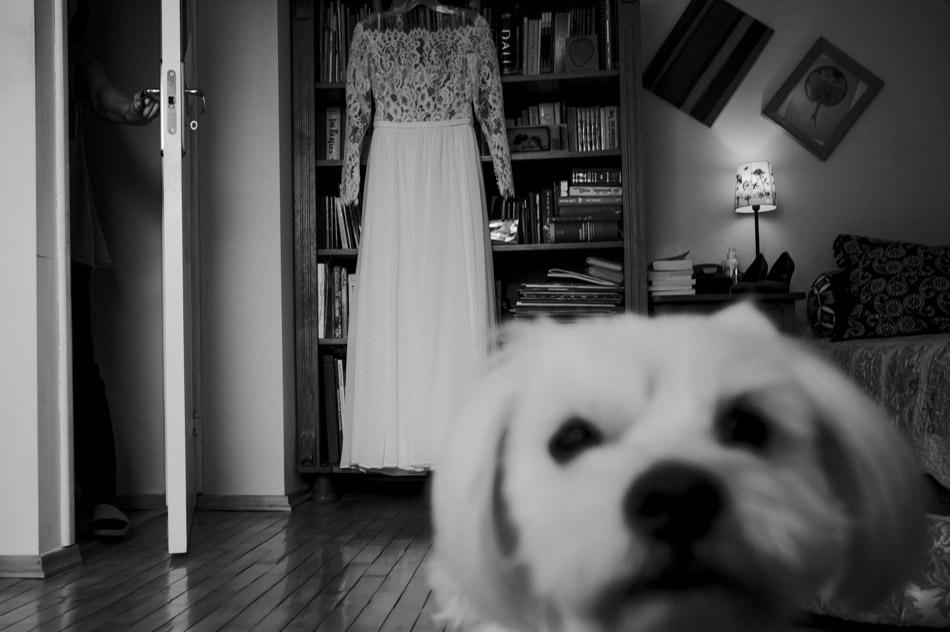sukienka ślubna w dniu ślubu